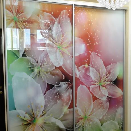 Шкаф-купе фотопечать Цветы